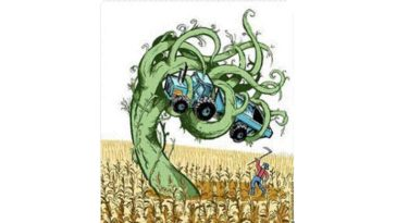 GM crops created superweed, say scientists