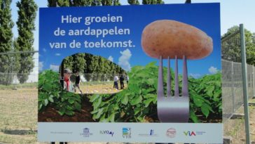 Dutch people at Belgian court for gm-potato process