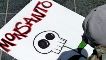 """""""Monsanto, there we are"""""""