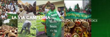 De Oproep van Jakarta van Via Campesina