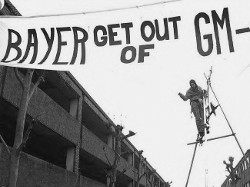 bayer-protest-engeland