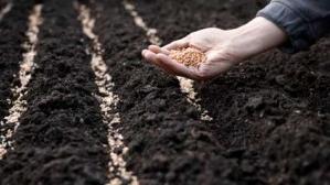 Boeren nodigen burgers uit om samen akkers in te zaaien