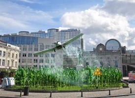 De mais die ze in Brussel willen