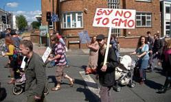 Wetsvoorstel Europese Commissie: meer GMOs toelaten
