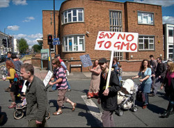 gmo-say_no_to_gmom_shields_photography