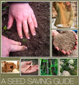 voorkant-a-seed-savers-guide