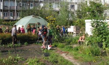 Sowing Diversity: een kort verslag
