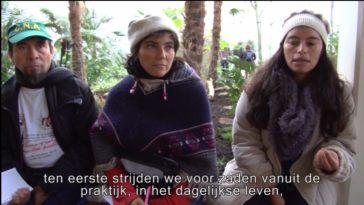 Filmpje: Strijd om zaden in Colombia en Nederland