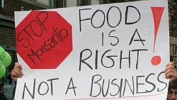 Marches Against Monsanto