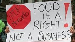Persbericht: Protest bij RAI tegen Monsanto en chemische industrie