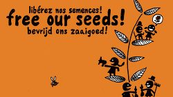 Take action in the legislative process of EU-Seed regulation!