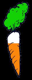 wortel-7