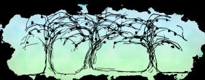 logo-noordelijk-zadennetwerk