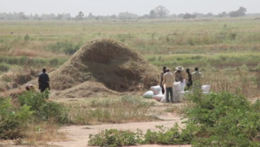 Monday April 13: presentation about the struggle against landgrabbing in Mali