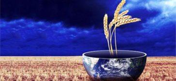 Climate Smart Kunstmestverslaving: Business as Usual