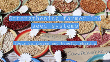15 June: Strengthening Farmer-led Seed Systems