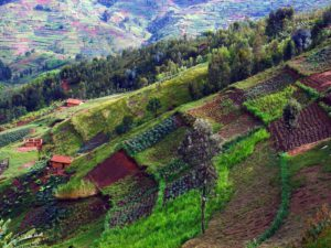 Hill Side Farming in Africa