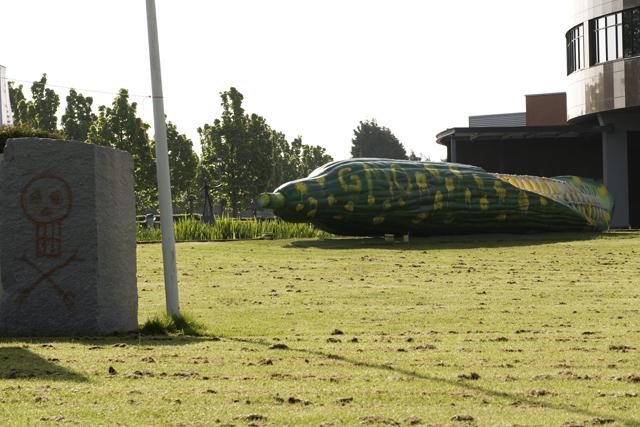 monsanto-bergschenhoek-komkommer