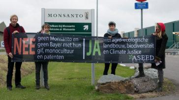 Monsanto – ook in Nederland actief – ook in Nederland ongewenst