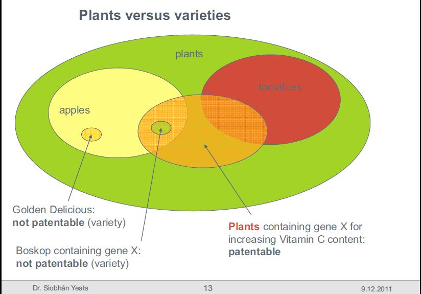 plants-vs-varieties