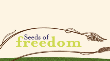 Seed films & documentaires