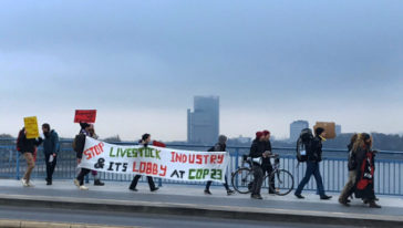 Klimaatactivisten demonstreren tegen Duitse diervoederlobby