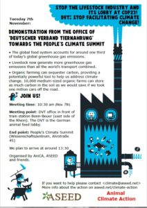 Flyer demo DVT COP23 Bonn