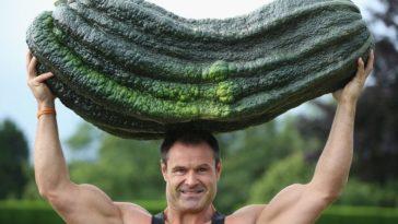Giant veggie