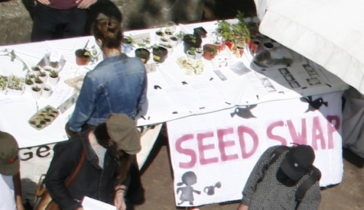 Stekjesruil tijdens Food Autonomy Festival