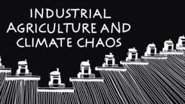 New brochure:  Industrial Agriculture and Climate Chaos