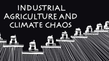 Nieuwe brochure: Industriële landbouw klimaatchaos
